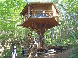「郷」の六角型ツリーハウス